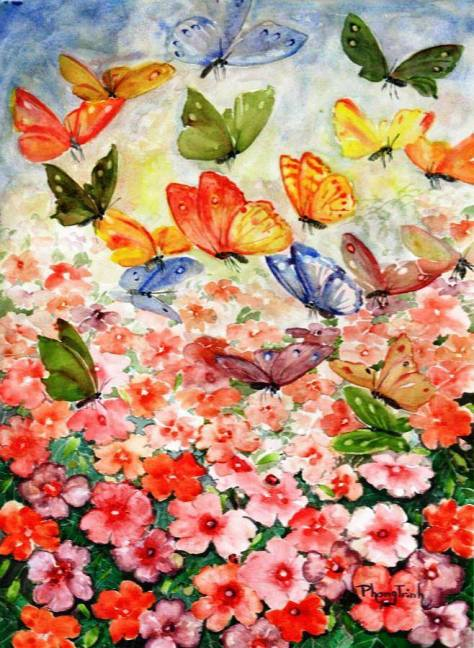 Butterflies Colors