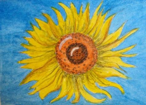 51 Sunflower (3)