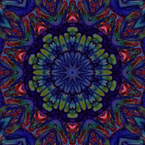 dark-blue-abstract-star-mandala-5-cindy-boyd