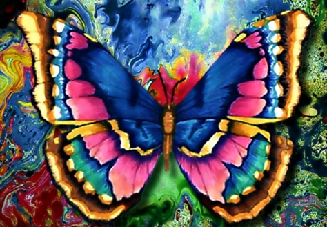 abstract-butterfly-for-cherie-monarch