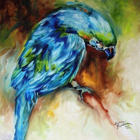 abstract-parrot-images-3