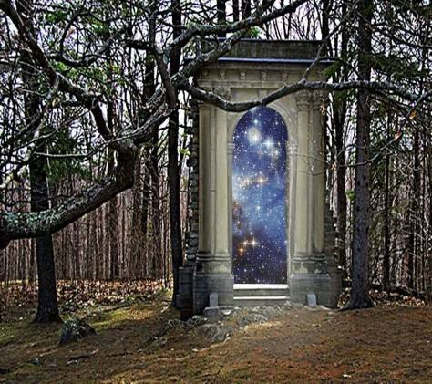 portal woods