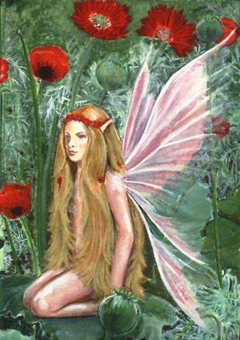 poppy_fairy2